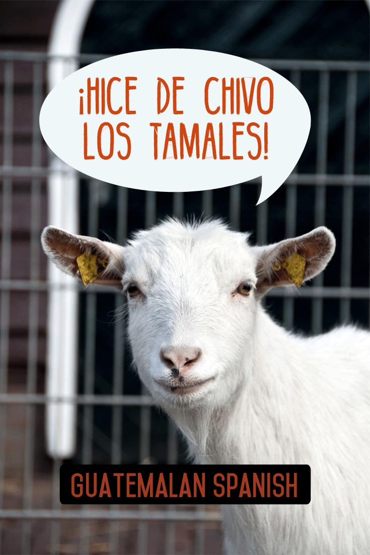 Guatemalan sayings: Hacer de chivo los tamales